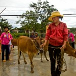 Local people happy about receiving new animals for the Village